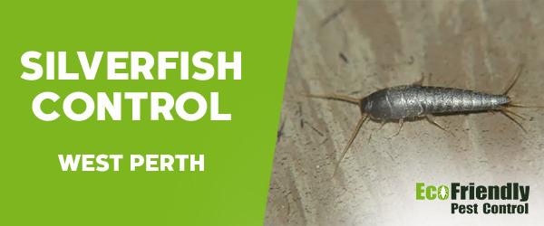 Silverfish Control  West Perth