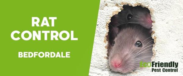 Rat Pest Control  Bedfordale