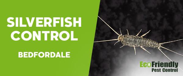 Silverfish Control  Bedfordale