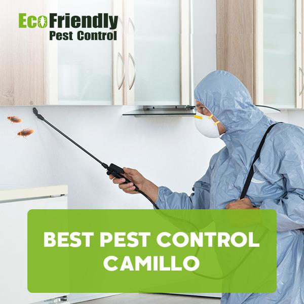 Best Pest Control  Camillo