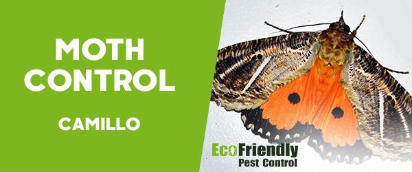Moth Control  Camillo