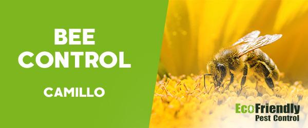 Bee Control  Camillo