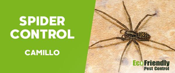 Spider Control  Camillo
