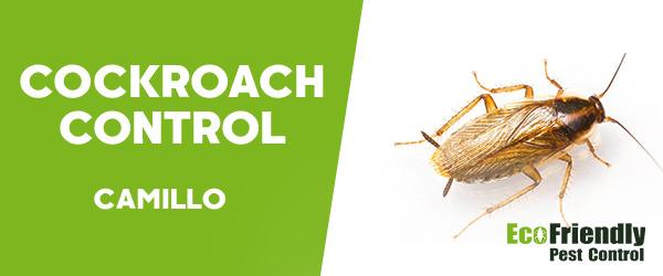 Cockroach Control  Camillo