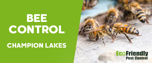 Bee Control Champion Lakes