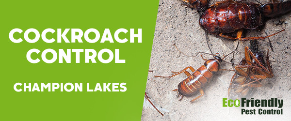 Cockroach Control Champion Lakes