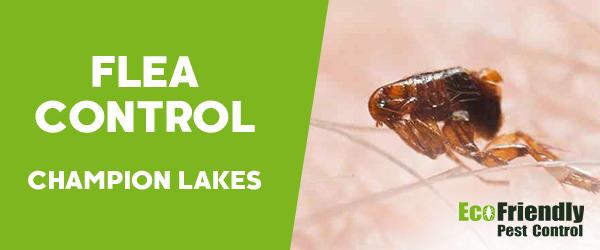 Fleas Control Champion Lakes