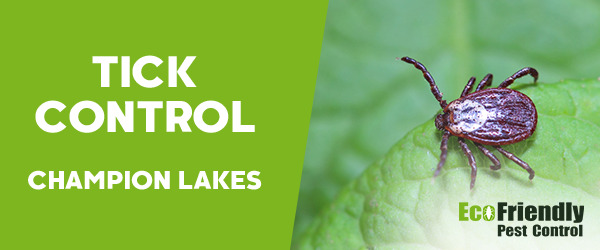 Ticks Control Champion Lakes