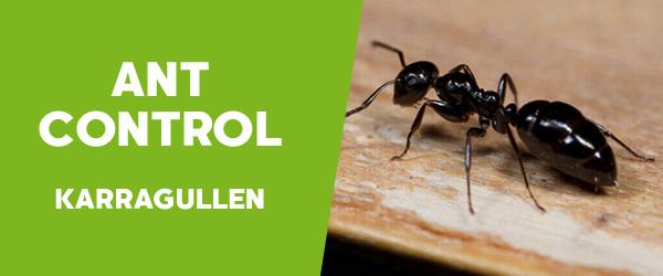 Ant Control Karragullen