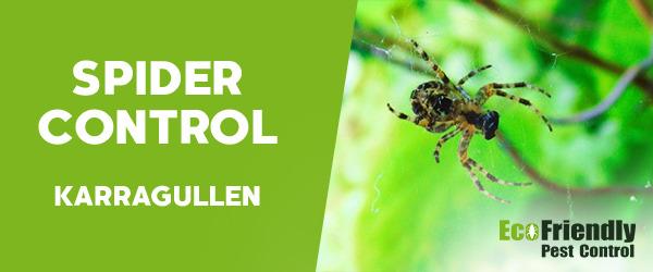 Spider Control Karragullen