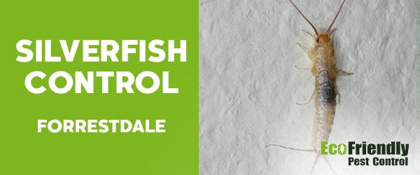 Silverfish Control  Forrestdale