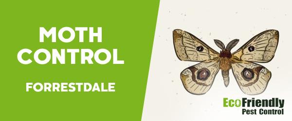 Moth Control  Forrestdale
