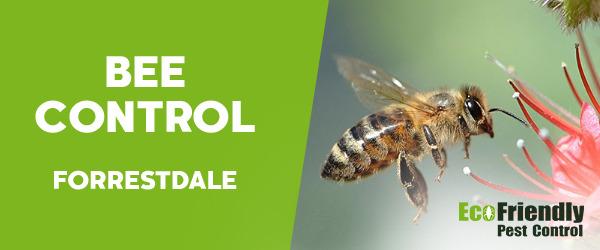 Bee Control  Forrestdale