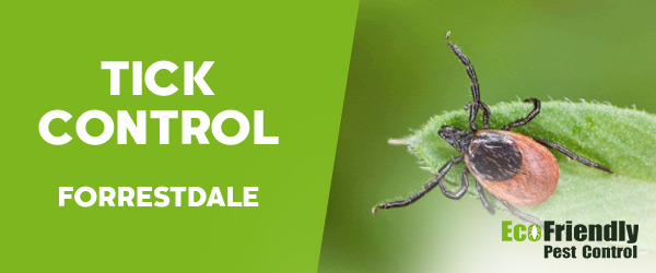 Ticks Control  Forrestdale