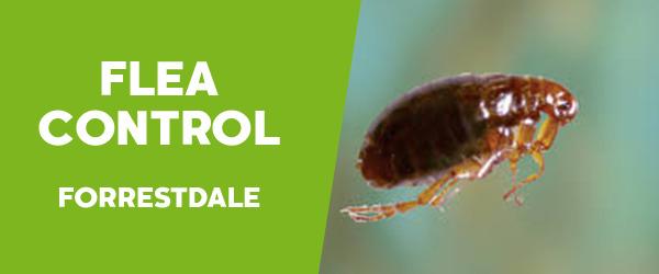 Fleas Control  Forrestdale