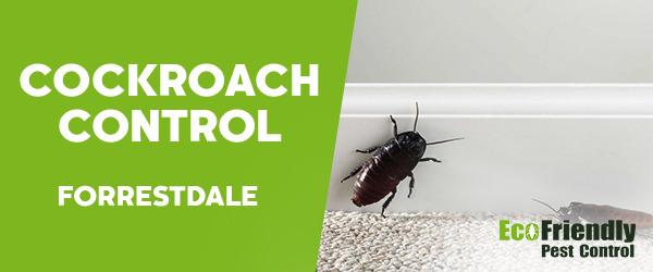 Cockroach Control  Forrestdale