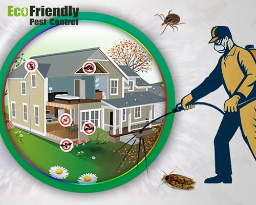 Pest Control Forrestdale