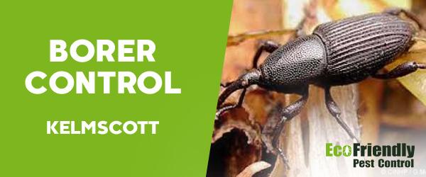 Borer Control  Kelmscott