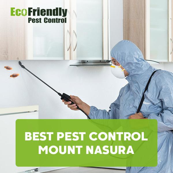 Best Pest Control Mount Nasura