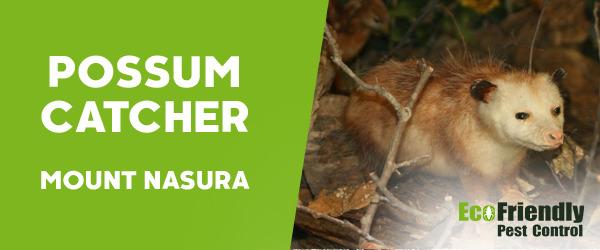 Possum Catcher Mount Nasura