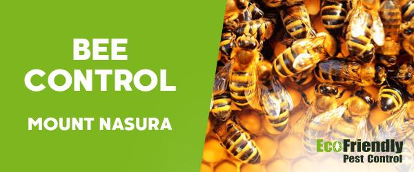 Bee Control Mount Nasura