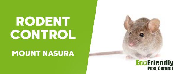 Rodent Treatment Mount Nasura