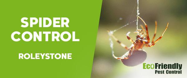 Spider Control  Roleystone