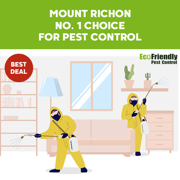 Pest Control Mount Richon