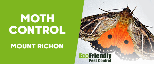 Moth Control Mount Richon