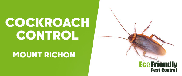 Cockroach Control Mount Richon