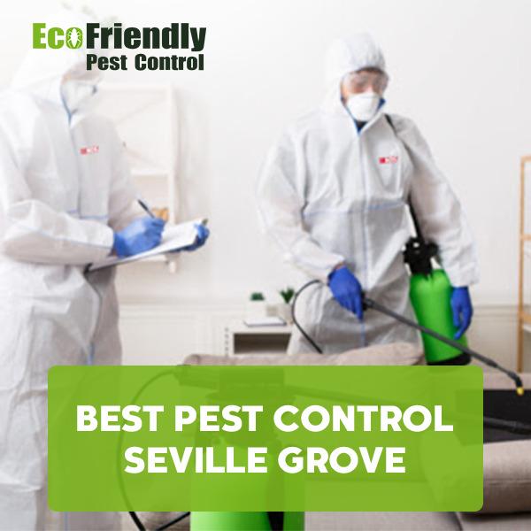 Best Pest Control  Seville Grove