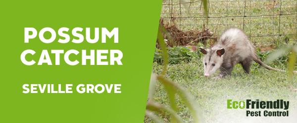 Possum Catcher  Seville Grove
