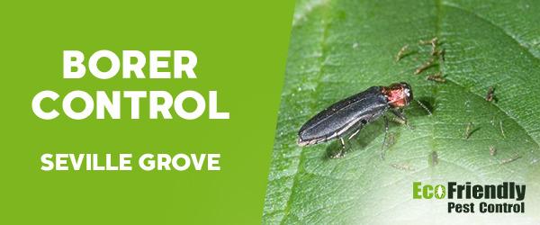 Borer Control  Seville Grove