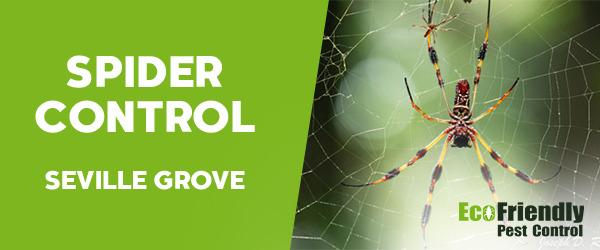 Spider Control  Seville Grove