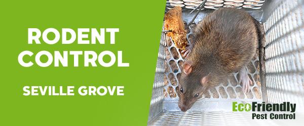 Rodent Treatment  Seville Grove