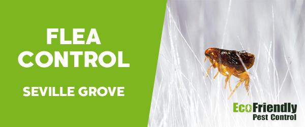 Fleas Control  Seville Grove