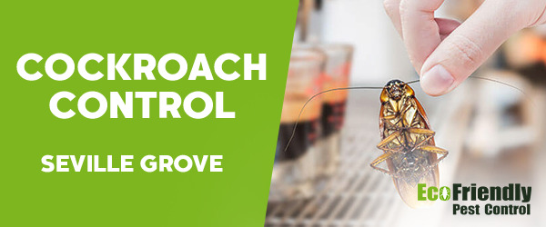 Cockroach Control  Seville Grove