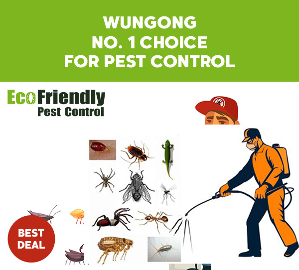 Pest Control Wungong
