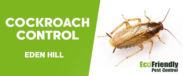 Cockroach Control  Eden Hill