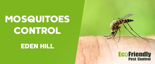 Mosquitoes Control  Eden Hill
