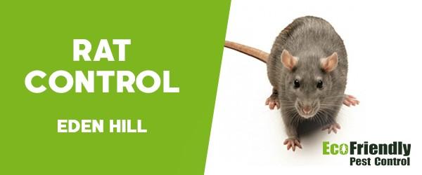 Rat Pest Control  Eden Hill