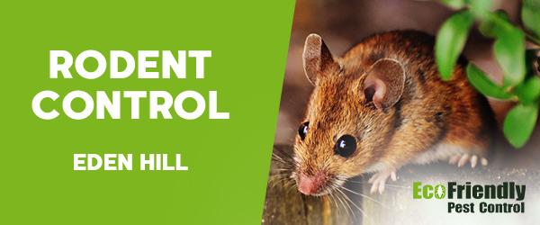 Rodent Treatment  Eden Hill