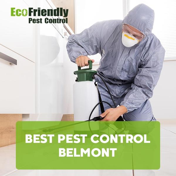 Best Pest Control  Belmont