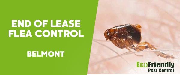 End of Lease Flea Control  Belmont