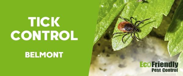 Ticks Control  Belmont