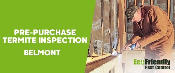Pre-purchase Termite Inspection  Belmont