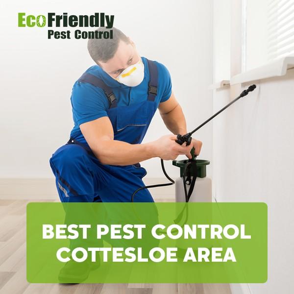 Best Pest Control Cottesloe
