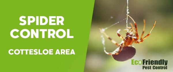 Pest Control Cottesloe