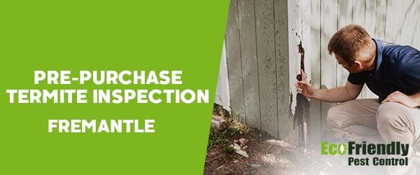 Pre-purchase Termite Inspection  Fremantle