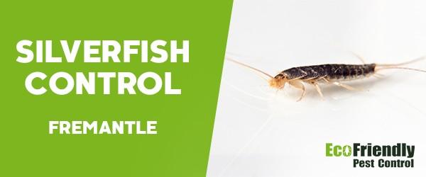 Silverfish Control  Fremantle